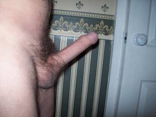 i want a long ride on that big hard cock. and then ill lick u clean. mmm