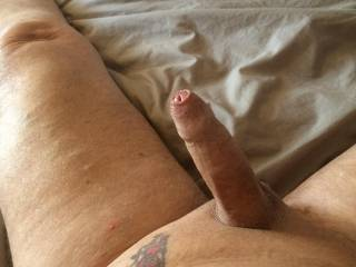 Well what would you do with my cock like this ?