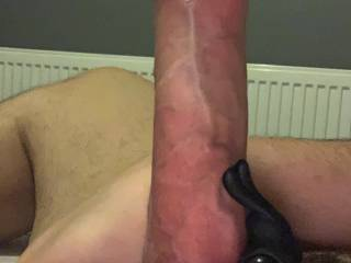 A few shots from my last cock ring stroking session. Look how veiny and vascular and hard my cock gets, I'd love to share these sessions with somebody to help me finish with a big cumshot.