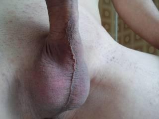 Nice cock to suck, sexy full balls.