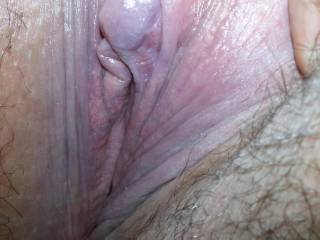 I love this picture of your nice horny hairy pussy. YUM!!  Love pussy hair.