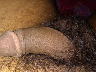 My hairy cock loving to fuck girls n milf too