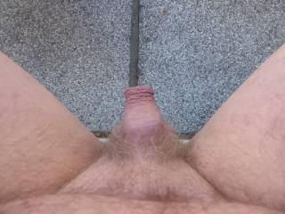 show my small cock to the world