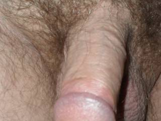 would love my moist warm lips wrapped around your hot cock