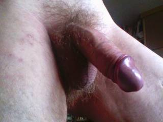 nothing like a thick uncut cock with a purple head waiting to be sucked!! fuck i'll do it in a heatbeat!!