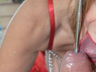 Giving him a little suck and lick whilst inserting a sounding rod into his cock. Naughty I know, but it really has to be done......