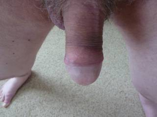 Great cock.  Needs a good sucking I think.