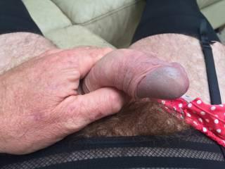 In my wifes panties
