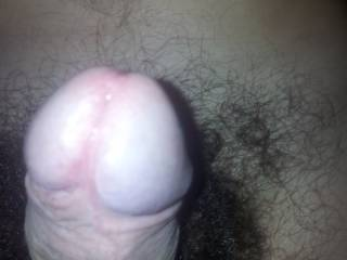 Would love to tongue that pretty head!