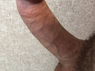 Whatcha think about this dick?
