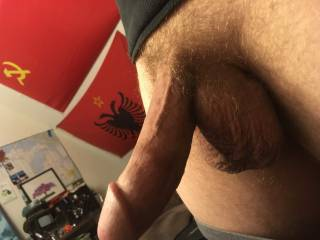 Tell me what ya think my my 8+ in cock. Could you fit the whole thing in your mouth?