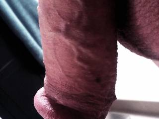 and delicious looking.  I enjoy tonguing and then tugging on a soft cock with my lips.  K