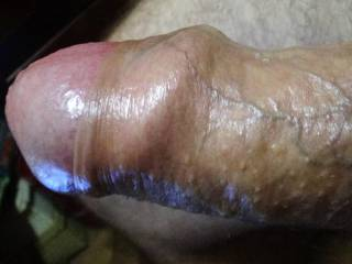 My lubed cock while chating starts sending its head outside. What would you do to it when full erect?