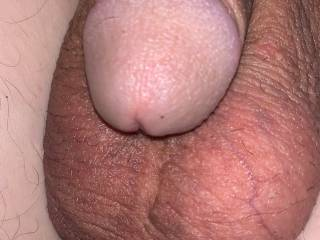 My shaved big balls and cock head
