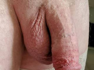 Nylon stocking gay hanging cock dick penis balls