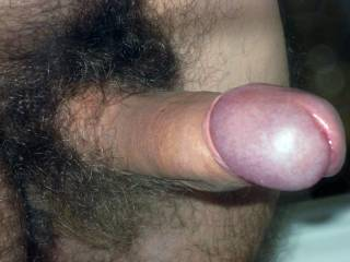 nice hairy cock!! look good in me i think