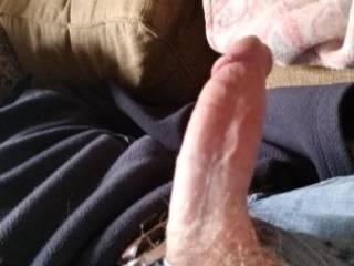 So horny watching all these sexy ladies in Virginia...... my cock taste like my girlfriends pussy who wants to suck it for me?