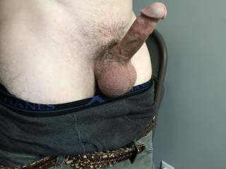 kiss my cock then slowly suck it