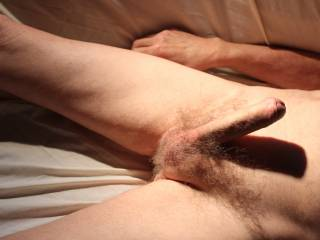 \'He\' is clearly very aroused easing my foreskin back; a clear indication that \'He\' want to be parting your labia!!