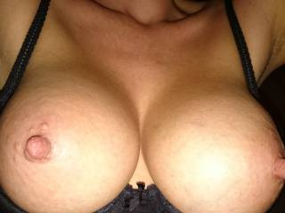 my  nipples want your cum. tribute me.