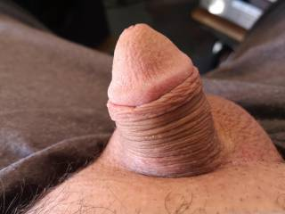 i like showing every one my small cock