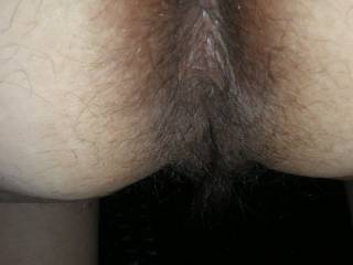 would you let me sniff and lick your dirty hairy brown assshole