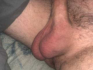 new cock pic 1