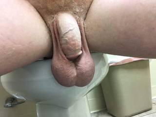Big saggy ugly balls hanging over toilet getting dirty