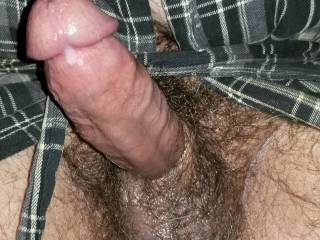 Open bathrobe exposing my big hard hairy cock