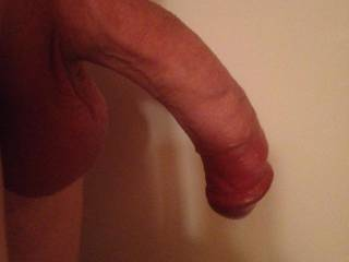 small dick not fully hard what are you thinking about the size ?