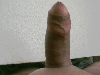 Thick cock erected