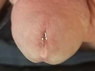 Would you like to rate my pre cum?