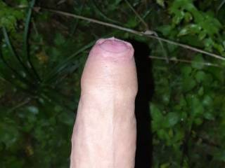 I was outdoor jerking off and took a nice pic before cuming