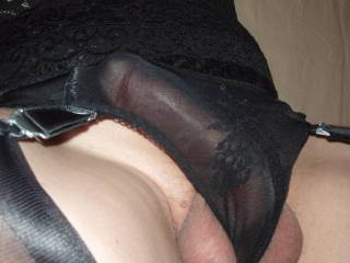 Your cock is so beautiful behind your black panties.  Amazing what your panties do to your balls as well.  Stunning view!