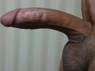 My cock want a horny babe