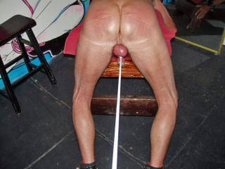 Eve decided I needed a remedial trainnig session...OUCH!!  She tugged on my balls and used a switch on my ass!  she didn\'t hold back!  you want to be next??