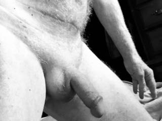 Shaved cock on display in B&W!